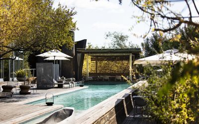 Award-winning design sets properties apart in competitive luxury safari market